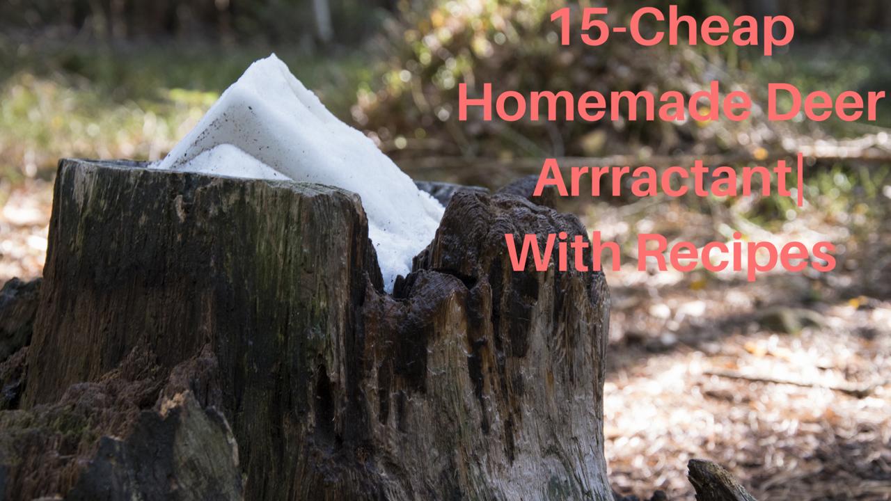 15-Cheap Homemade Deer Attractant